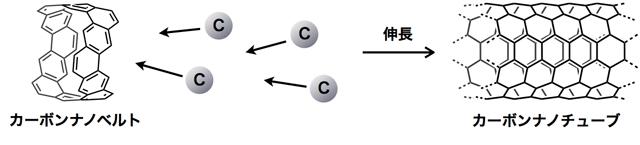 「カーボンナノベルト」をテンプレートにしたカーボンナノチューブ伸長反応