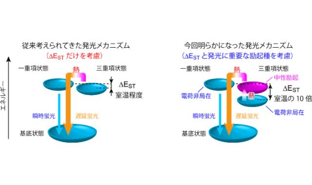 TADF発光の従来考えられてきたメカニズム(左)と、今回明らかになったメカニズム(右)