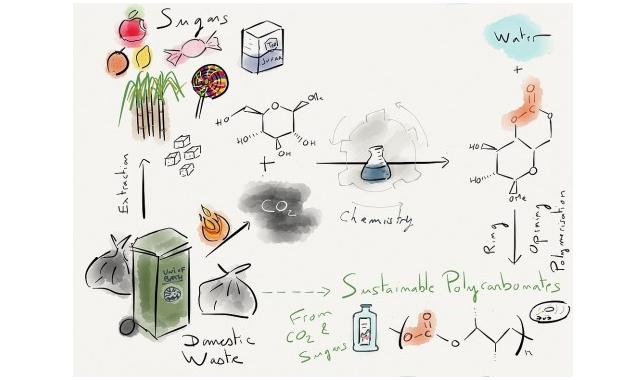 糖類と二酸化炭素から生分解性をもつポリカーボネートを合成するイメージ