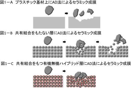 有機無機ハイブリッド膜の共有結合による効果の推定メカニズム
