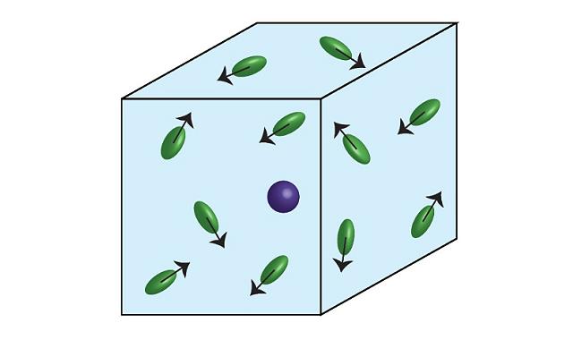 ブラウン運動の数学モデルを超える――自然界のランダムな動きを説明する ...